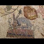 http://comite-des-villes-jumelees-saint-cyr-sur-loire.fr/sites/default/files/imagecache/big/jjr/09-09-22_Paphos_Mosaiques_maison_Dionysos_025.png